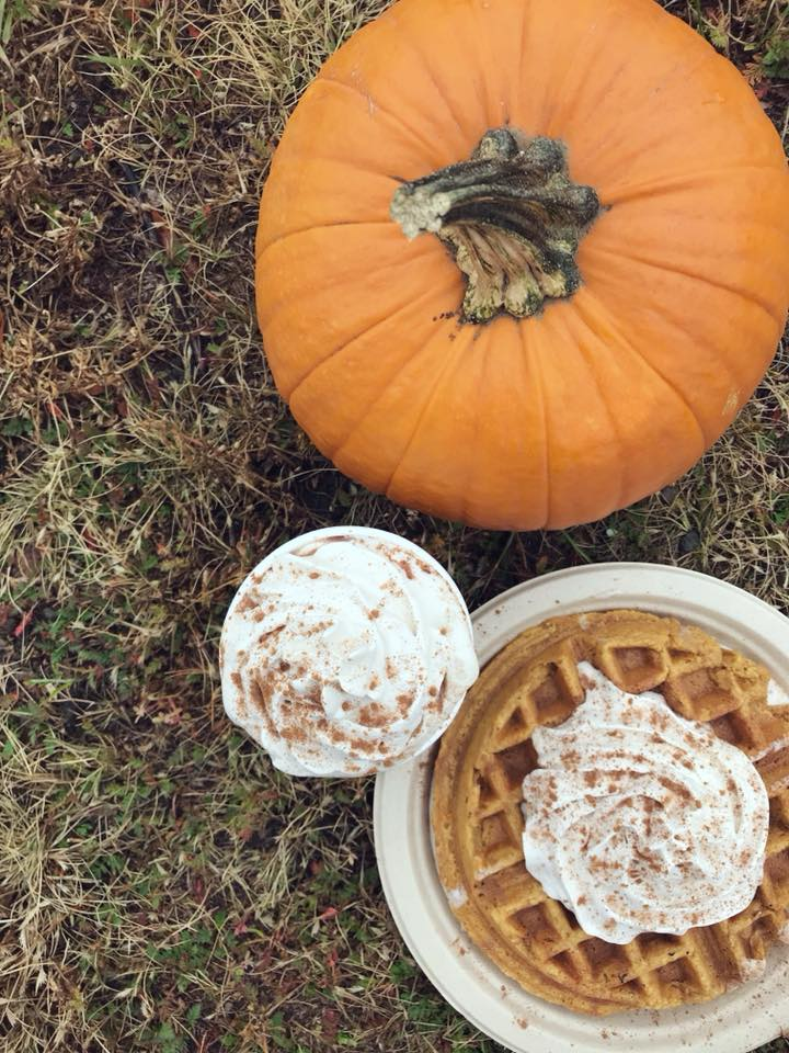 A pumpkin pie waffle short cake with coconut whipped cream is next to maca hot chocolate and pumpkin on browning autumn grass.
