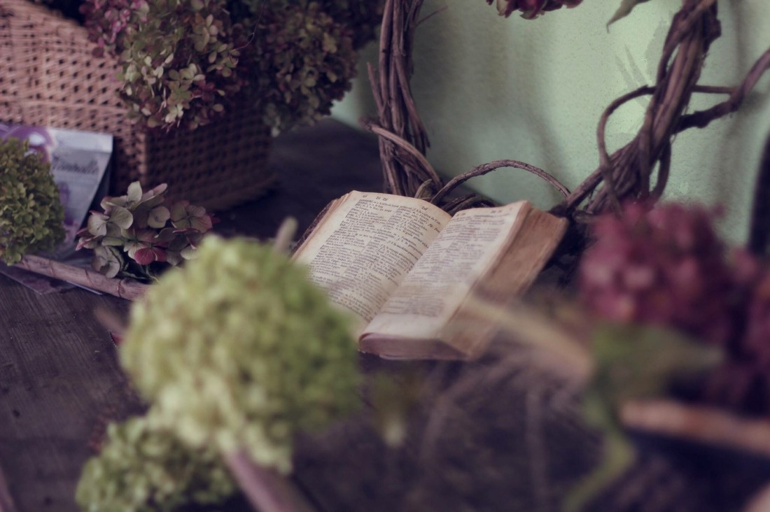 Ancient book lying open on a shelf in a greenhouse