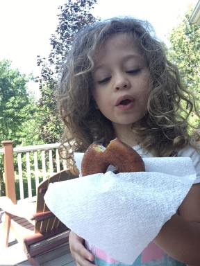 cider doughnut 1