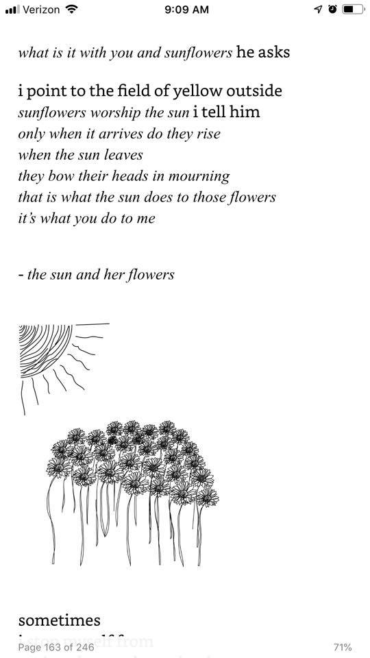 sun and her flowers