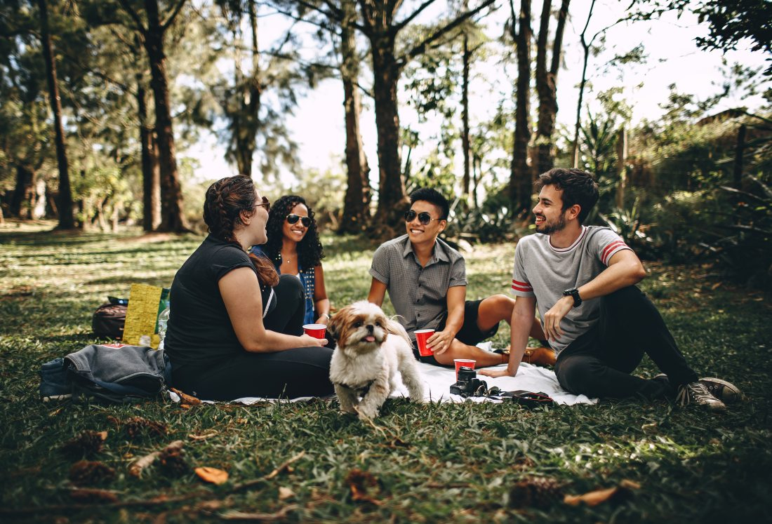 Millennial friends having a picnic, men and women